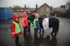 Pony in the playground by Geraldine Heaney
