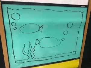Show 4 Fish